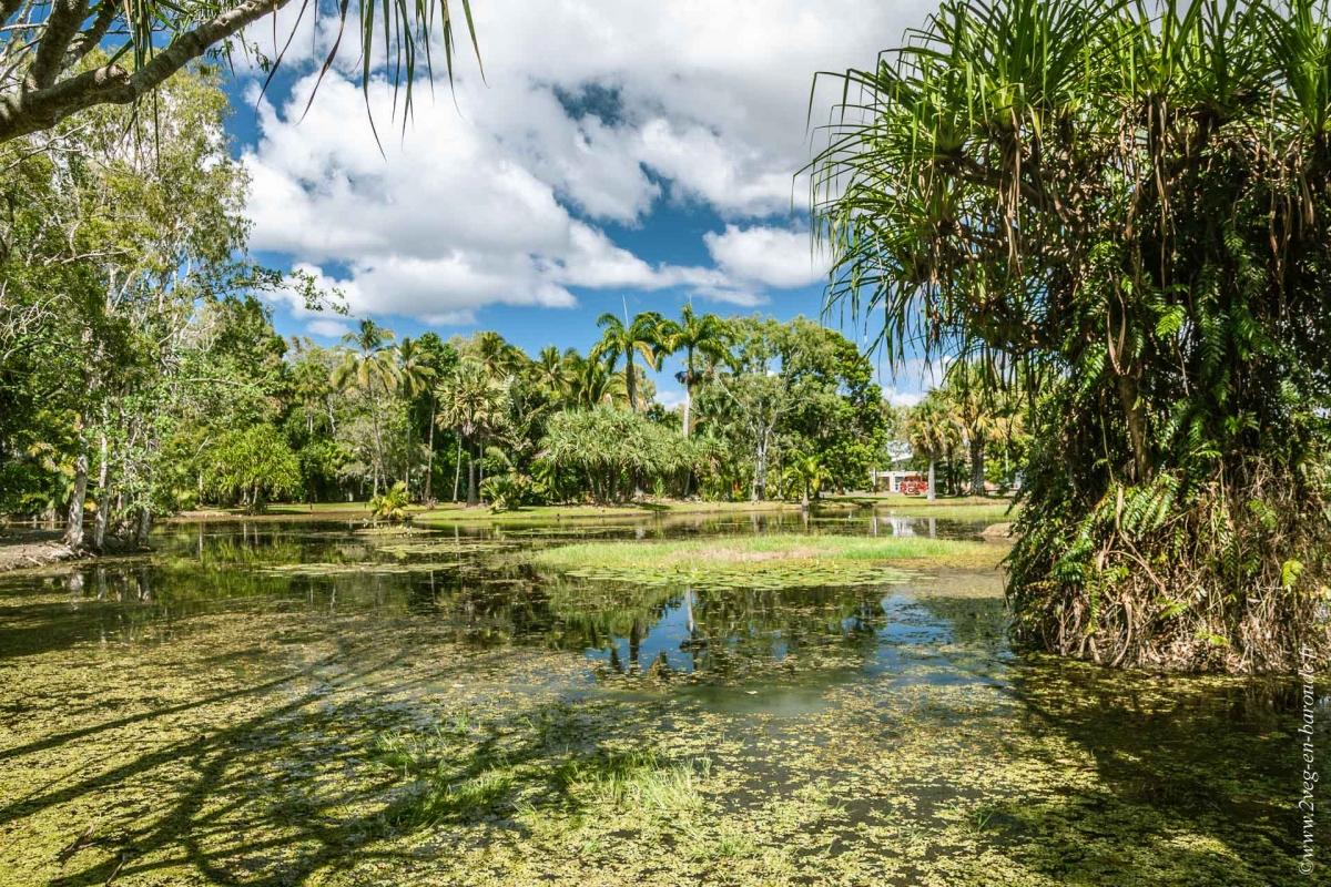 Cairns une ville qui bouge la naturaliste voyage for Ask yourself why la piscine